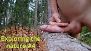 Exploring the nature #4 - Risking it on a Forest path